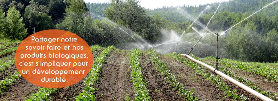Partager notre savoir-faire et nos produits biologiques, c'est s'impliquer pour un développement durable